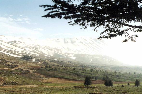 Dahr el-Kadib