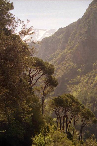 Vallée de la Qadisha