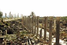 Excavaciones de la Ciudad