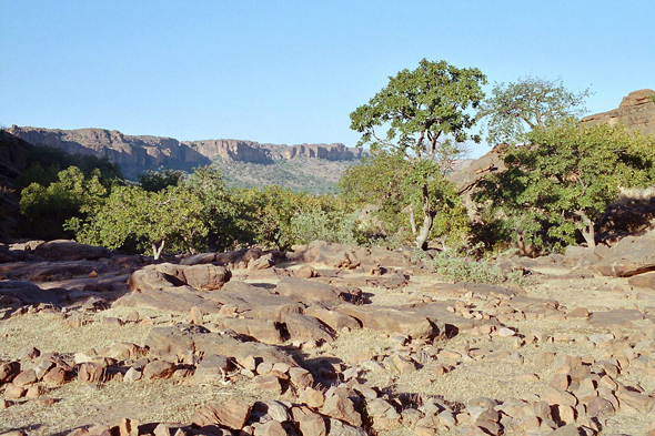 Dogon Country, landscape