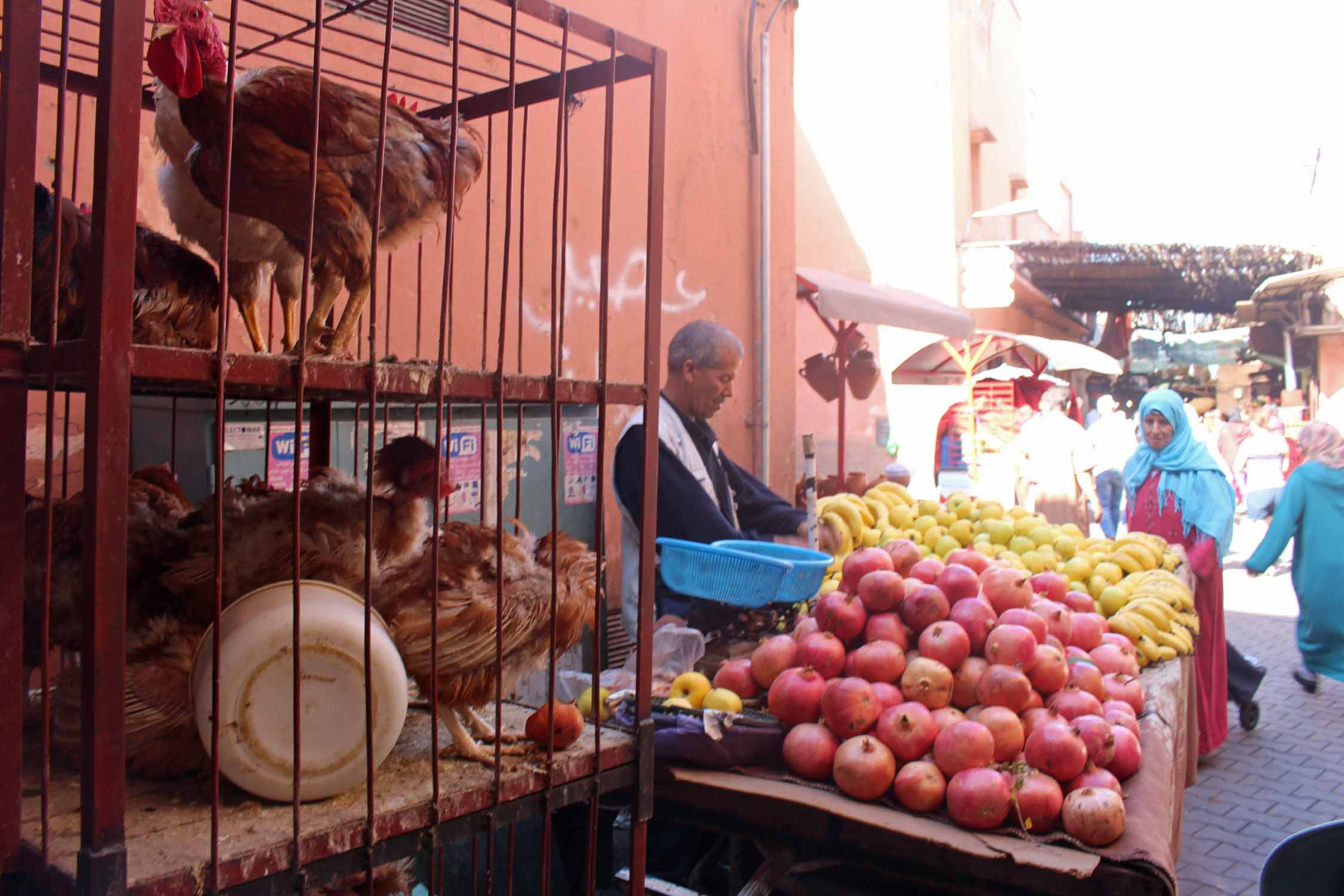 Marrakech, souk, fruits