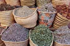 Herbalist shop