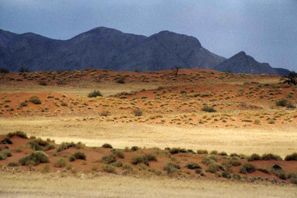Namibie, Solitaire, paysage
