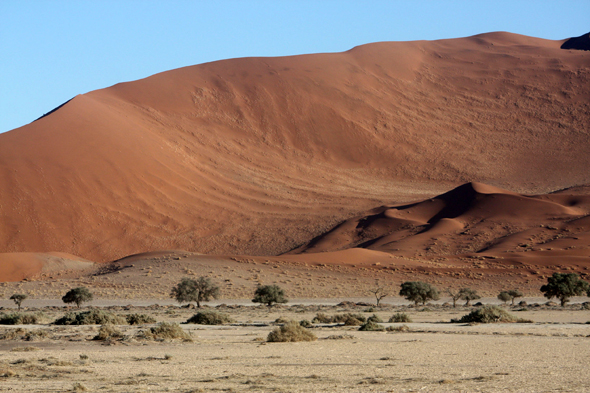 Splendid dunes of Sossusvlei