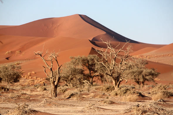 Sossusvlei, the fabulous orange dunes