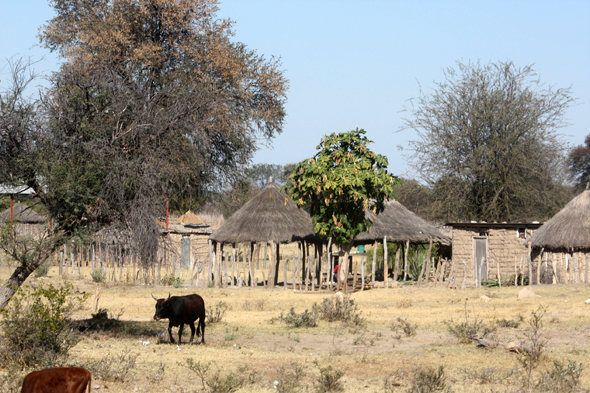 Caprivi Strip, village