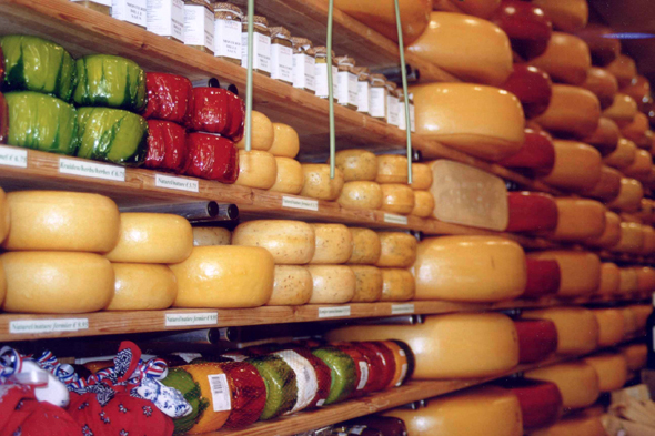 Cheese, Netherlands, Gouda