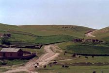 Qazaq