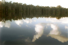 Lac Sandoval