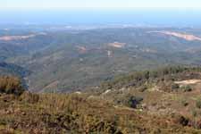 Mont Foia