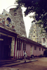 Asokaramaya