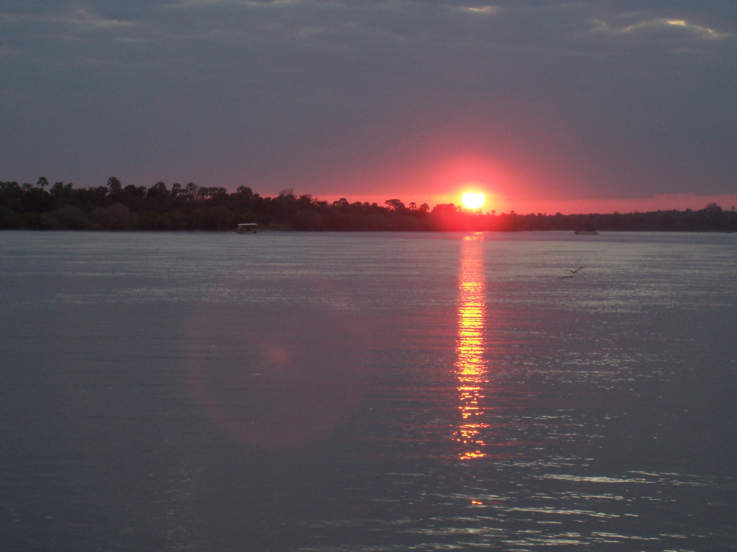 Zambezi river, sunset